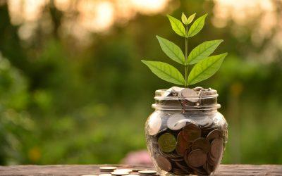 Top 3 Strategies to Grow C-Store Sales
