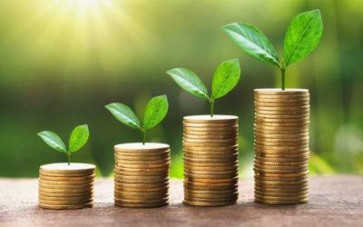 Grow Profits This Spring